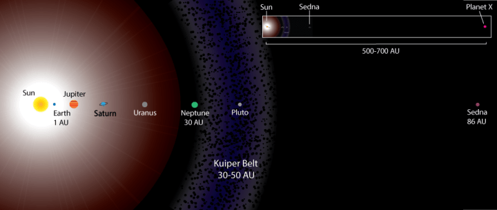 Figure 1 – A schematic of the solar system, showing Earth, the four outer planets, and Sedna (the first discovered trans-Neptunian object) in comparison to the theoretical distance of Planet Nine.