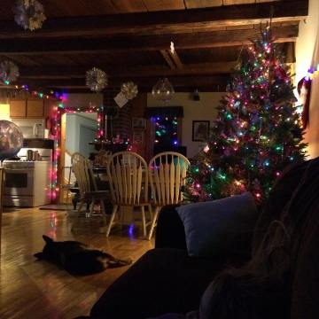 We're decked!