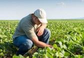 Atenção ao prazo de adesão ao Programa de Regularização Tributária Rural