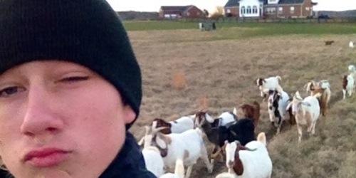 Marshall, goat wrangler