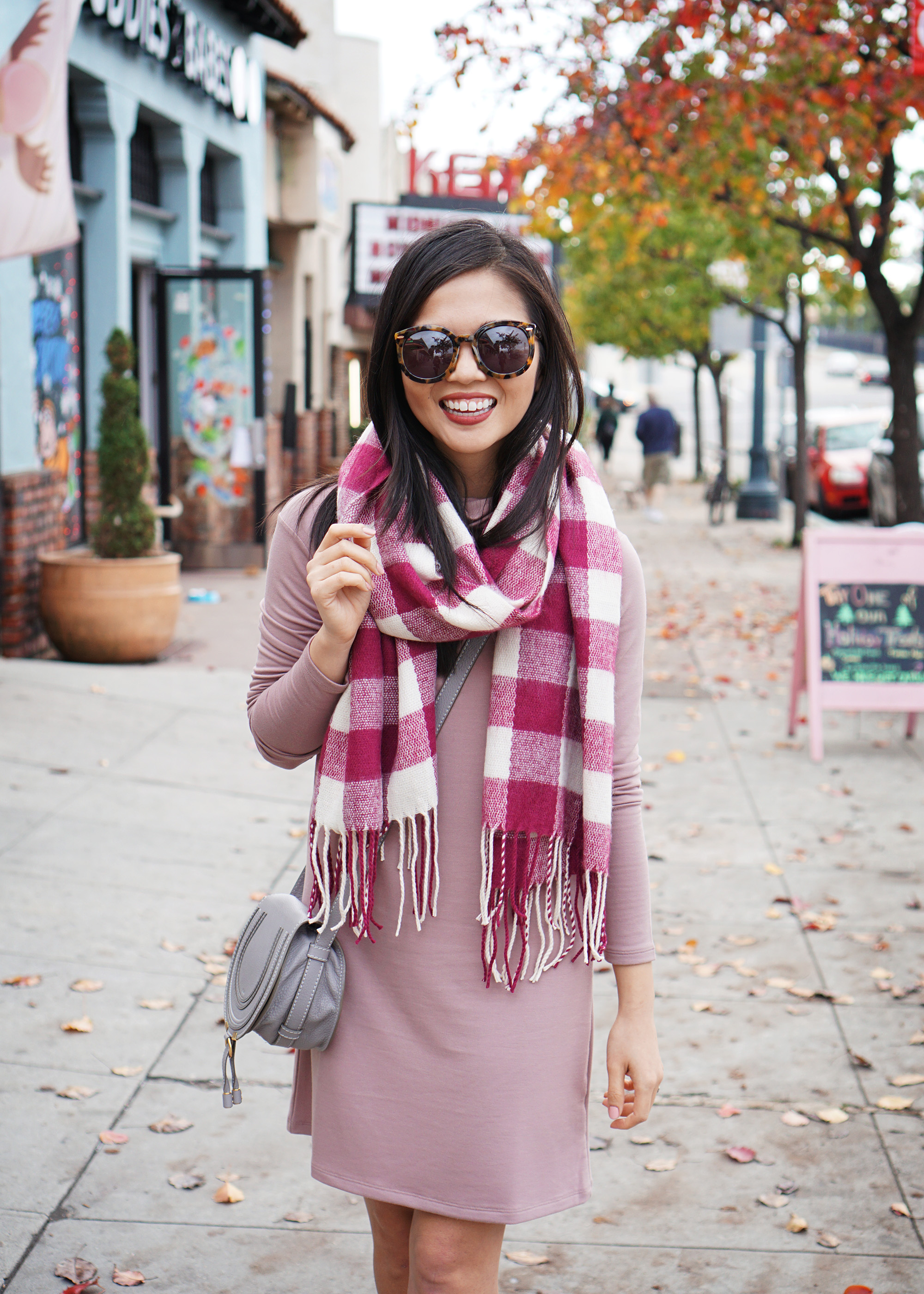 Pale Pink Long Sleeve Dress & Plaid Scarf
