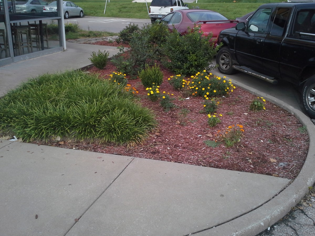 Landscape installation just in time for fall sk lawn care for Landscape installation