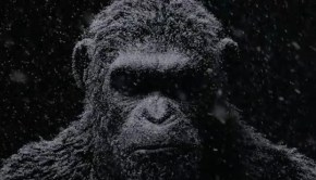 warfortheplanetoftheapesbanner
