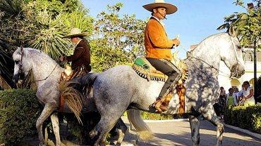 Cuadra San Francisco Promo Los Cabos Mexico