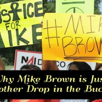 Mike Brown is Just Another Drop in the Bucket