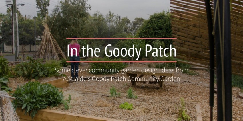 In the Goody Patch