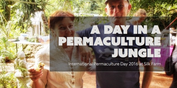 A day in a permaculture jungle