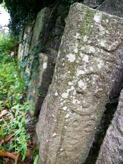 Old Gravestones, St Fintan's Graveyard, Cloneenagh - Photo, Kathleen Culliton