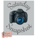 Saturday Snapshot – March 29, 2014