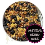 Oatmeal Berry Bake