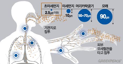 초미세먼지 입자 크기 비교 및 인체 침투 경로