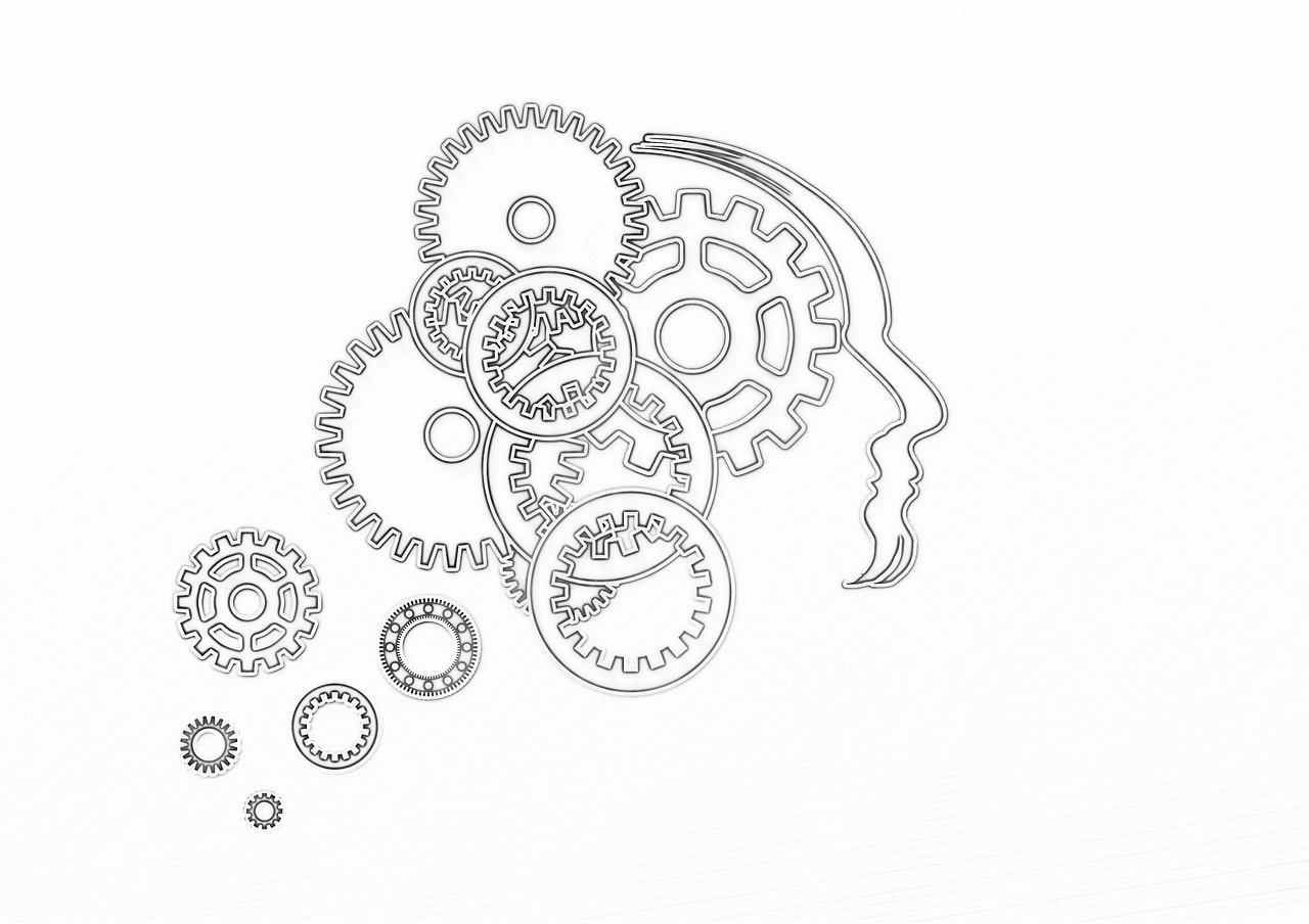 뇌 심리학 독심술 두뇌