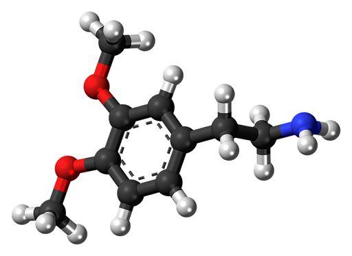 도파민(dopamine, C8H11NO2)