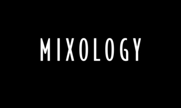 Critique de Mixology (ABC) : sitcom au shaker