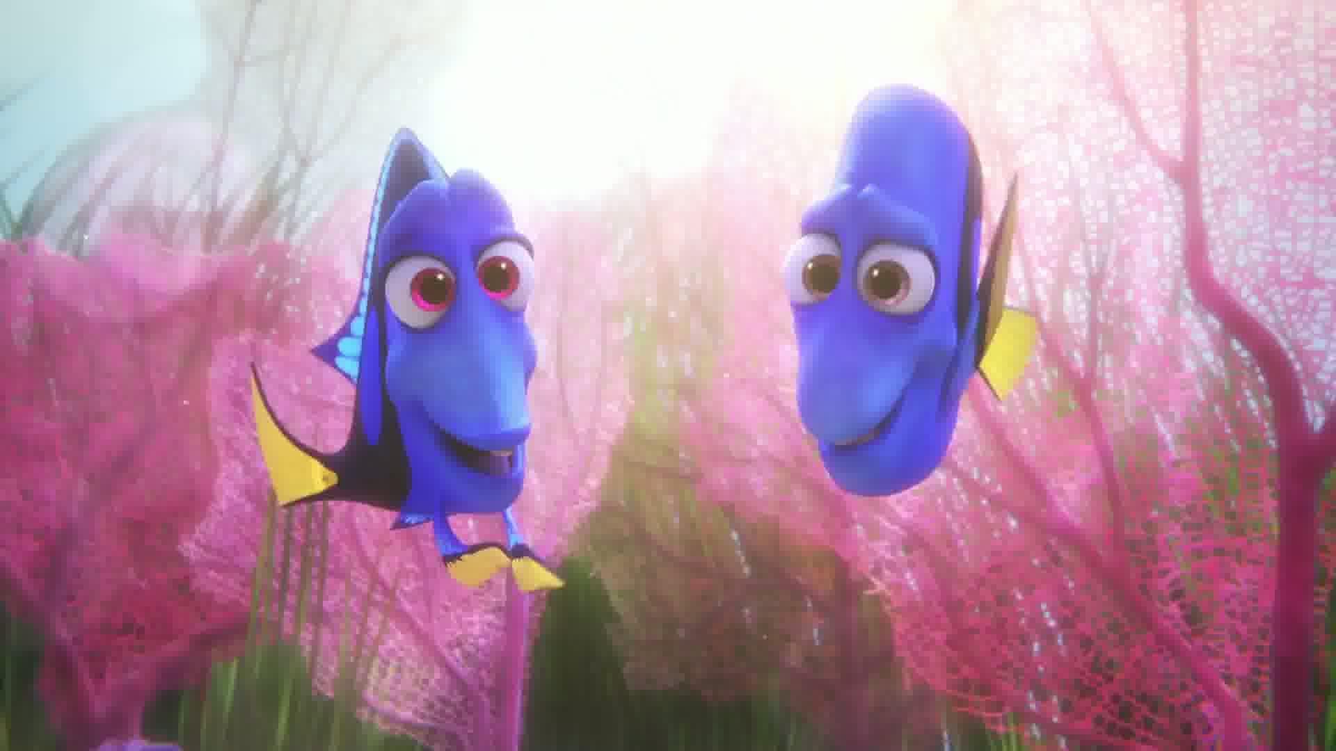 Les parents de Dory !