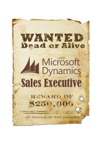 Procuramos Executivo de Vendas Dynamics CRM