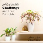 Declutter your home in 30-days with this 30 day declutter challenge. 30 quick and simple tasks you can complete in 15 minutes to declutter your home. Download your FREE printable and start today.