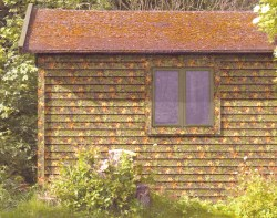 Small Of Vinyl Log Siding