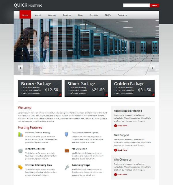 wordpress web hosting theme 04 12 Best Wordpress Web Hosting Themes
