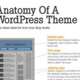 anatomy-wordpress-theme