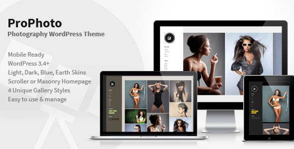 photography wordpress themes 03 10 Best Photography WordPress Themes for October 2012