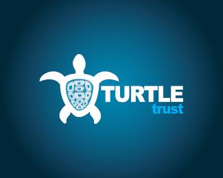 turtle logo design inspiration 04 25 Turtle Logo Design Inspiration