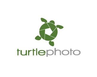 turtle logo design inspiration 08 25 Turtle Logo Design Inspiration