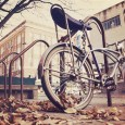 Bike-park-during-Fall