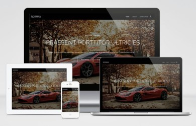 norman-wordpress-theme-01