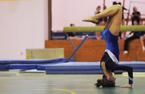 2013 Gymnastics Roster Announced