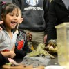 One of the kids is excited to see the reptiles shown by East students. Photo by Morgan Browning