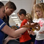 Junior Emma Hunt carefully hands off the corn snake to a little girl when she finishes explaining how to properly hold it. Photo by Lucy Morantz