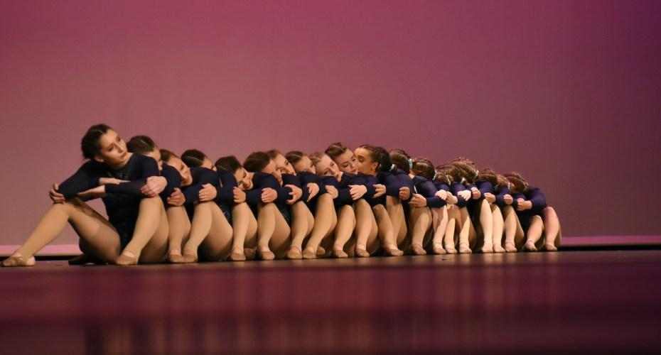 Gallery: Lancer Dancer Spring Show 2017