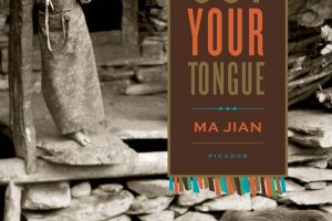 Stick Out Your Tongue: Stories by Ma Jian, translated by Flora Drew