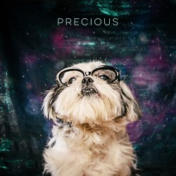 Pretentious Galaxy Glamour Shot Edition Sunglasses Glasses Jokes Arouty Galaxy Houston Rescue Dog Black Glasses Adoptable Dogs Dogs Dogs