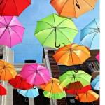 Schirme (1)