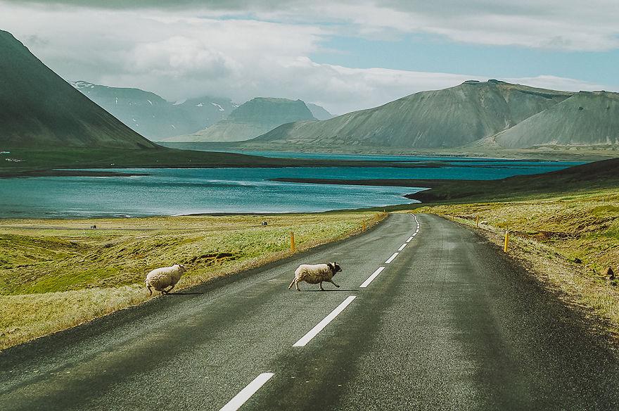 16 Monate auf den Straßen Islands