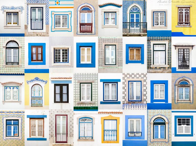 Fenster-dieser-Welt (4)