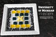University of Michigan JIGGLERS – Game Day Food!