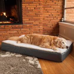 Small Of Dog Beds Amazon