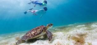 The Best Kids Snorkel Set Gear Guide