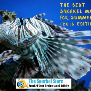 The Best Snorkel Masks  of the Summer 2016