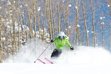 SnowMotion Ski Tip - Tree Skiing 1