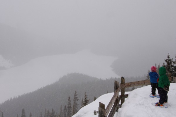 Peyto Lake in Winter