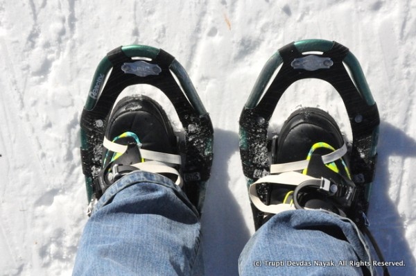 Wearing my nifty, compact snowshoes