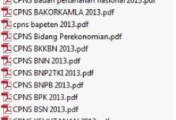 List Penerimaan CPNS 2013 di Pemda, Departemen Kementrian dan Instansi Negara