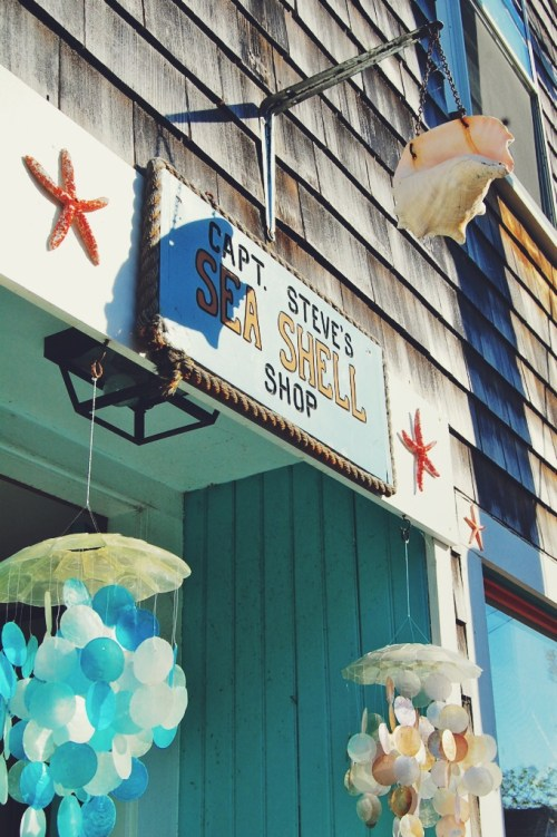 sea shell shop rockport