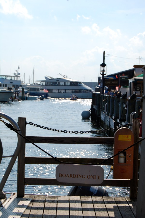 newport rhode island harbor boat cruises