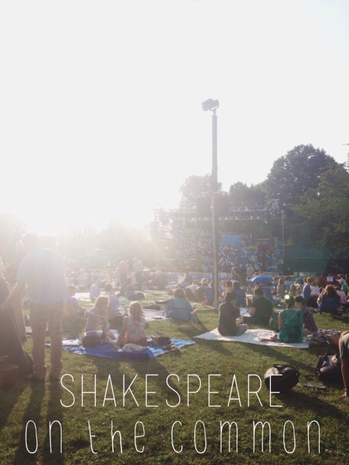 Shakespeare on the Common Twelfth Night Review