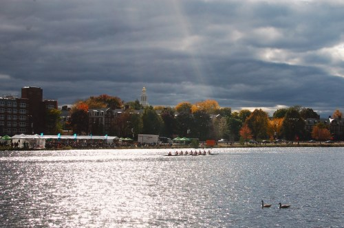 Where to watch Head of the Charles